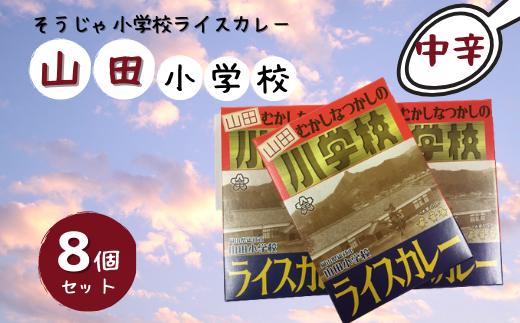 31-013-007.そうじゃ小学校ライスカレー(山田小学校版×8個)