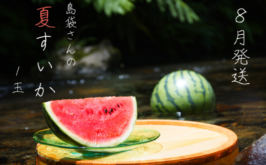 島袋さんの夏スイカ(5〜7Kg×1⽟)【2021年8月発送】