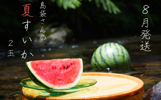 島袋さんの夏スイカ(5〜7Kg×2⽟)【2021年8月発送】