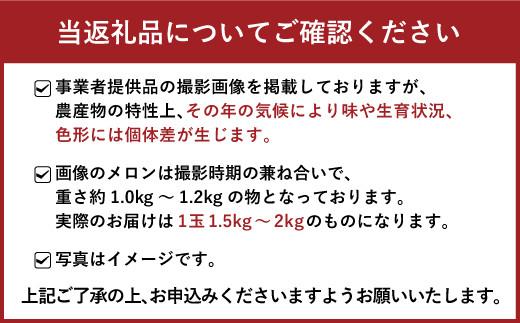 【5月~7月発送】宇城市産 肥後グリーン 2玉(3kg以上)メロン