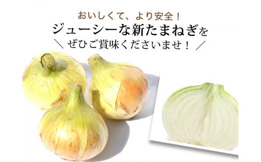 兵庫県認証★特別栽培★淡路島新たまねぎ【3㎏】
