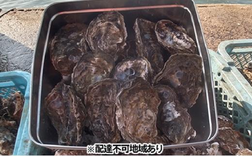 [№5709-0219]マルミ水産 殻付き牡蠣 約20個 (カンカン焼きセット)【配送不可:北海道・沖縄・離島】