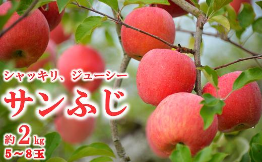1160 【令和3年11月中旬~発送予定】りんご[サンふじ] 約2kg(5玉~8玉)