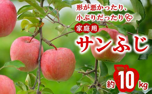 721 【令和3年11月中旬~発送予定】家庭用 りんご[サンふじ] 約10kg(46玉)