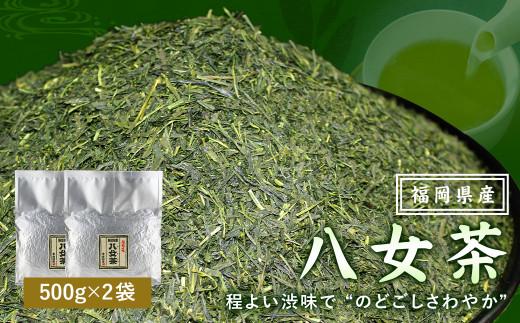 福岡県産 八女茶100%( 500g 袋詰 × 2袋 )計1kg お茶 煎茶