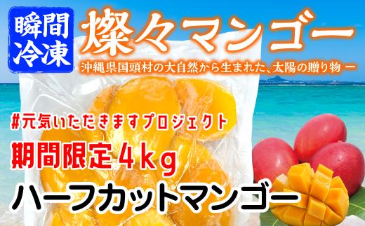 【ニコニコエール品】【沖縄県産】冷凍 燦々マンゴー(ハーフカット)4kg【無添加・保存料不使用】