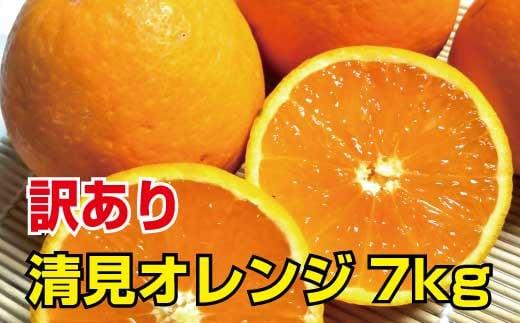 【訳あり】清見オレンジ 約7kg ご家庭用 ※2022年3月上旬より順次発送予定(お届け日指定不可)