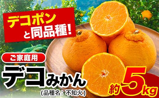 熊本県産(荒尾市産含む)ご家庭用デコみかん(不知火)約5kg(12-24玉前後)柑橘《2月末-4月上旬頃より順次出荷》生産量日本一!デコポンと同品種!