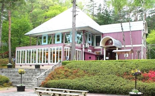 琥珀の森に囲まれた「レストランくんのこ」