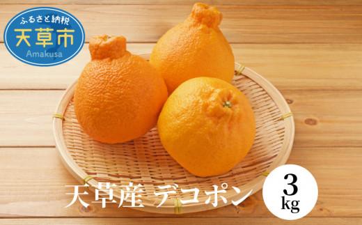 S053-002_天草産 デコポン 3kg
