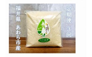 定期便3ヶ月コース【無洗米】で家事をラクに♡ふっくらごはん♡ミルキークイーン2㎏真空パック入り 令和2年産