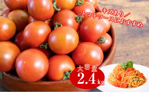 【訳あり・規格外】ましまファームのアイメック®フルティカトマト2.4kg