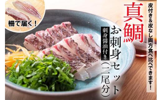 【期間限定!】漁師こだわりの養殖真鯛!2尾分お刺身セット!