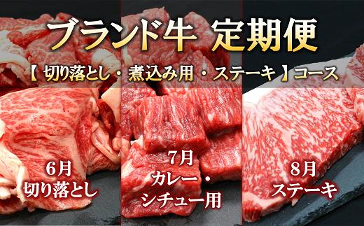 1181【令和3年6月開始】ブランド牛定期便[全3回]切り落とし・煮込み用・ステーキコース【辰巳屋牛肉店】