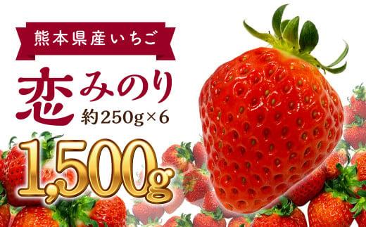 熊本県産 いちご 恋みのり 約250g×6パック 計1500g フルーツ
