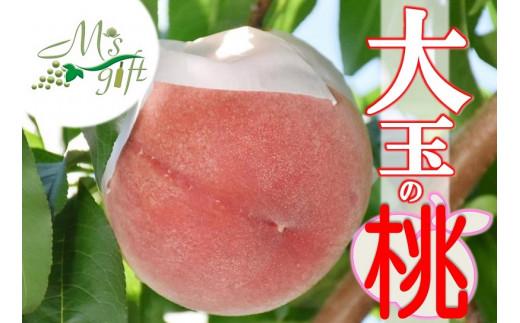 甲州市産厳選旬の桃大玉6ヶ入り(MG)