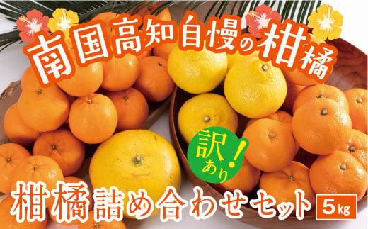 【訳あり】柑橘詰め合わせセット(約5kg)