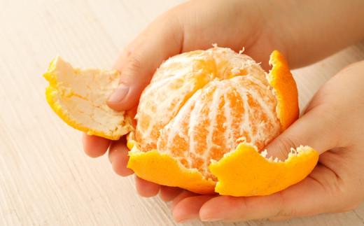 ハウス栽培 元祖不知火 約3kg(8~10玉)玉揃え 贈答用 果物 柑橘