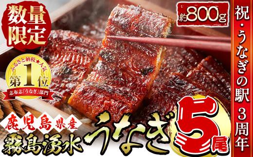 b5-079 【お礼の品人気No1】霧島湧水鰻の蒲焼き 160g以上×5尾<計800g以上>
