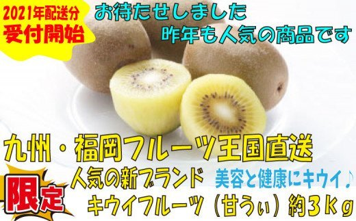 九州・福岡フルーツ王国より直送.人気の新ブランドキウイフルーツ(甘うぃ)約3kg/2021年11月~12月配送