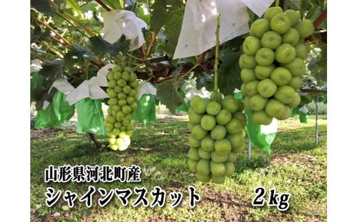 K-00221 山形県河北町産シャインマスカット2kg