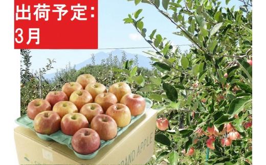 [№5228-0519]3月 美味!訳あり葉とらずサンふじ約10kg 【弘前市産・青森りんご】