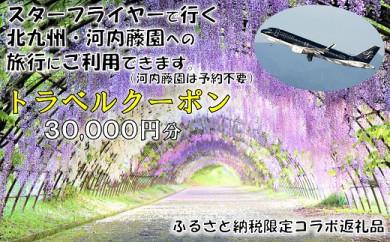 RD12100 河内藤園入園券付 羽田発SFJで行く北九州2日間(トラベルクーポン30,000円分)
