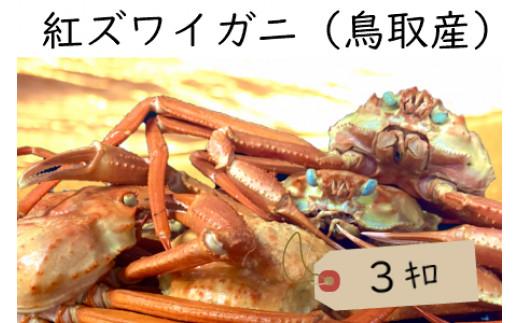 水揚げ全国一の鳥取県からお届け