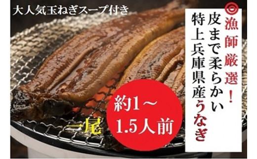 AUA3:漁師厳選!大吟醸酒米で育てた兵庫県産極上うなぎ蒲焼1尾セット【たまねぎスープ付き】