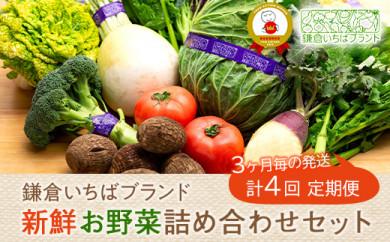 【3ヶ月毎計4回 定期便】四季を味わえる「鎌倉いちばブランド」新鮮お野菜詰め合わせセット