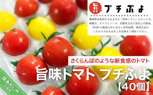 【アクアヴェルデAWAJI】旨味トマト プチぷよ 40個