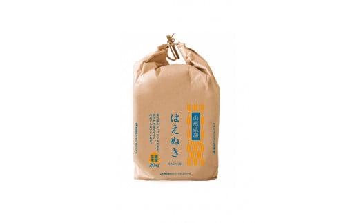 03D1080 【あんしん玄米】はえぬき20kg[令和2年産]
