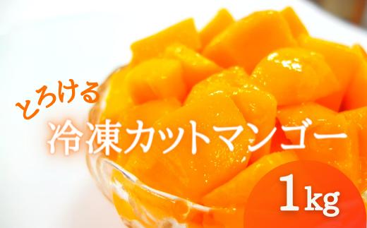 冷凍カットマンゴー《計1キロ(500g×2袋)》【2021年7月発送】