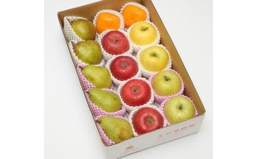 03D0430D 季節のフルーツ詰合せ(11月分)約5kg