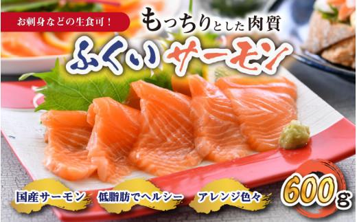 【コロナ訳あり】ふくいサーモン600g(刺身用) 真空冷凍 200g × 3パック [A-7002]