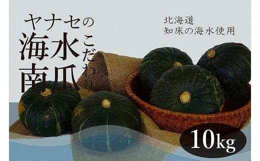 南瓜 10kg 知床海水ミネラル栽培 ヤナセ農園/010-27090-b01A