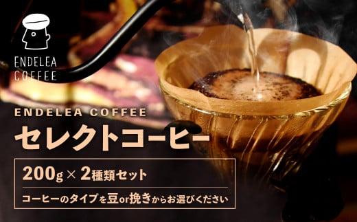 セレクト コーヒー 200g×2種類 珈琲 スペシャルティコーヒー