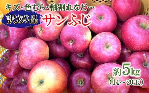 1178 【※訳あり】りんご[サンふじ] 約5kg(14玉~20玉) 【令和3年11月中旬~発送予定】