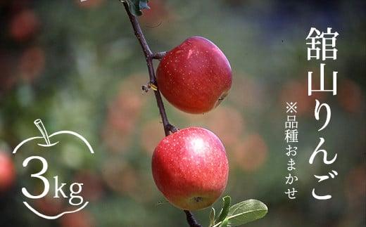 《先行受付 2021年産》舘山りんご※品種おまかせ(秋映または秋陽) 3kg 10月上中旬頃発送 R3年産