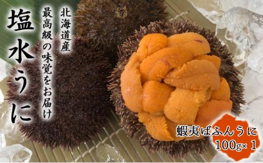 [№5863-0289]北海道産塩水うに(蝦夷ばふんうに)100g×1