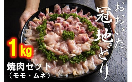 【おいしく食べて生産者を応援‼】おおいた冠地どり焼肉セット1.0kg(モモ・ムネ)10月末まで 【チャレンジ応援品】