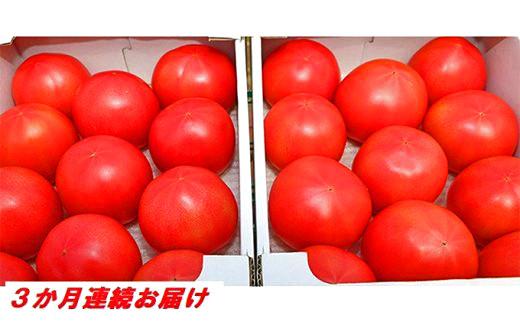 [№5672-0479]【3カ月定期便】甘熟トマト『白岡の太陽』約4kg×3カ月