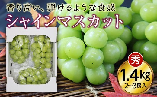 山形県産「シャインマスカット」秀品1.4kg(2~3房入り) F20A-893