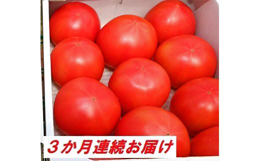 [№5672-0481]【3カ月定期便】甘熟トマト『白岡の太陽』約2kg×3カ月