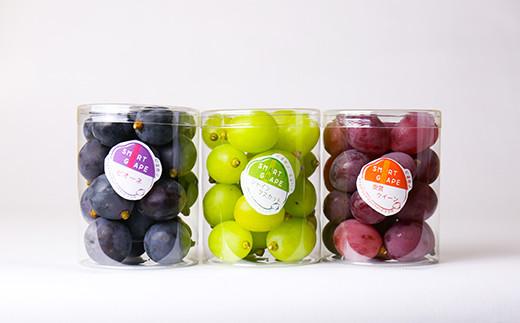 【先行受付/数量限定】≪9月中旬~9月下旬お届け≫smart grape(種無し) パック入り 3種類 750g(1パック250g)  2021年産 シャインマスカット 安芸クイーン ピオーネ ぶどう