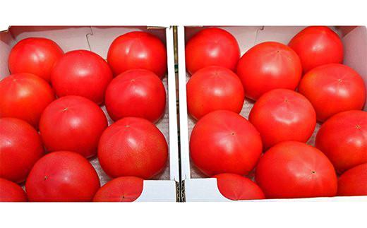 [№5672-0480]甘熟トマト『白岡の太陽』約4kg