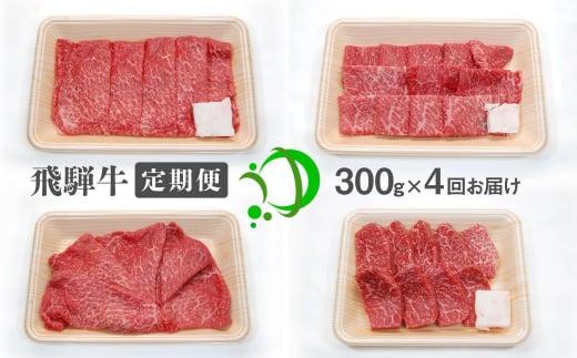 《定期便》飛騨牛 4回お届け 4ヶ月 焼肉 すき焼き しゃぶしゃぶ ミニステーキ 300g 5等級