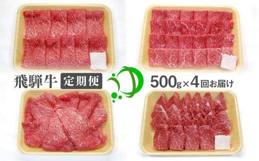 《定期便》飛騨牛 4回お届け 4ヶ月 焼肉 すき焼き しゃぶしゃぶ ミニステーキ 500g 5等級
