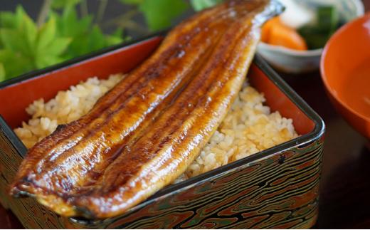 [№5786-3857]静岡県浜名湖産  鰻の蒲焼き  約110g×2本セット【2021年10月より順次発送】