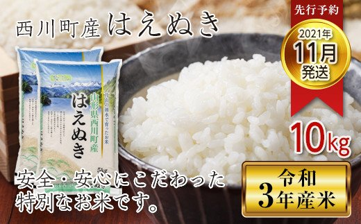 FYN9-349 【先行予約】令和3年産 山形県西川町産米 はえぬき 10kg (2021年11月発送)